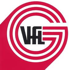 VFL Handball Günzburg
